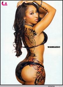 Model Wankaego