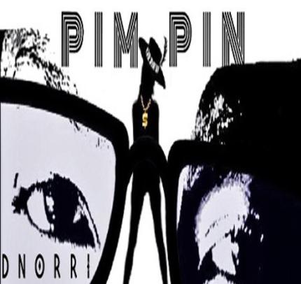 Track: Dnorri - Pim Pin